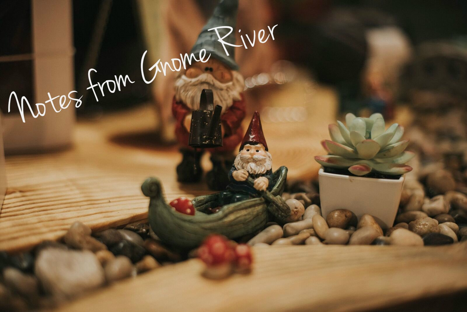 Notes from Gnome River