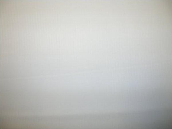 Spechler Vogel -skinny dip pique - White