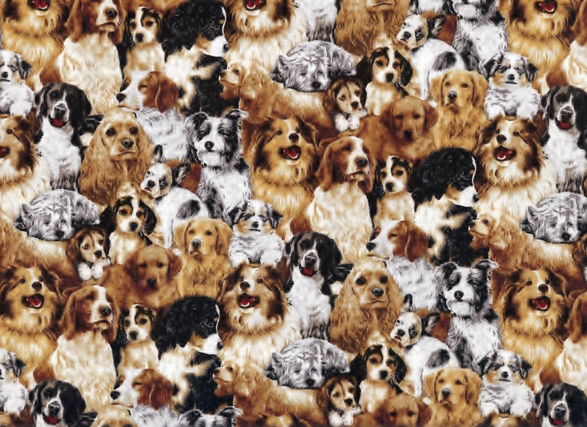Fabri-Quilt - 4 Paws Stacked Dogs