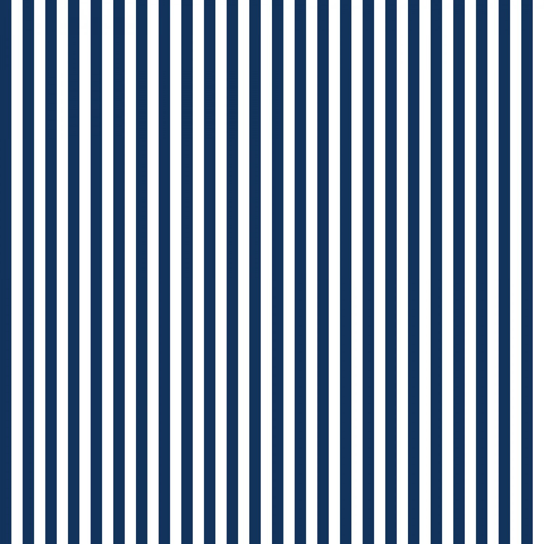 Riley Blake - Navy stripe