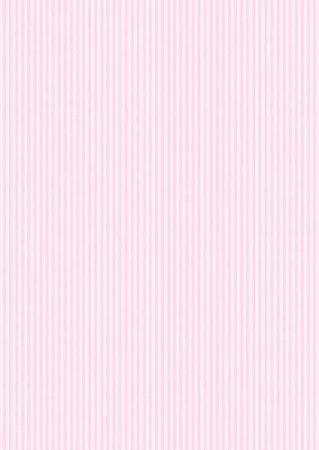 Spechler Vogel - Pima Cotton Stripe - Pink & White