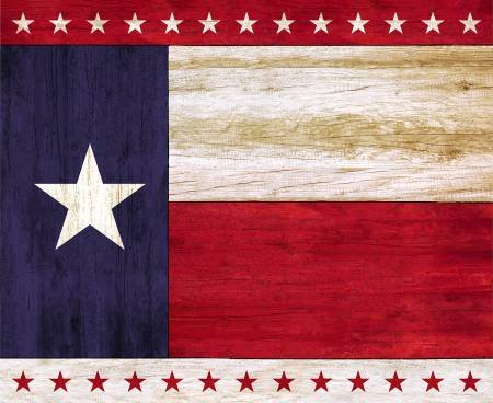 Timeless Treasures - Texas Lone Star State 36in Panel