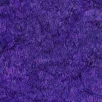 3285-004 Grape