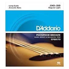 D'Addario EPBB170 Acoustic Bass 45-100