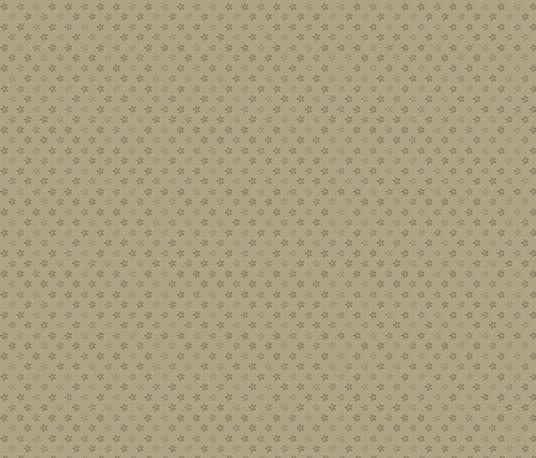 Drywall Prints by Marcus Fabrics (0819-0114)