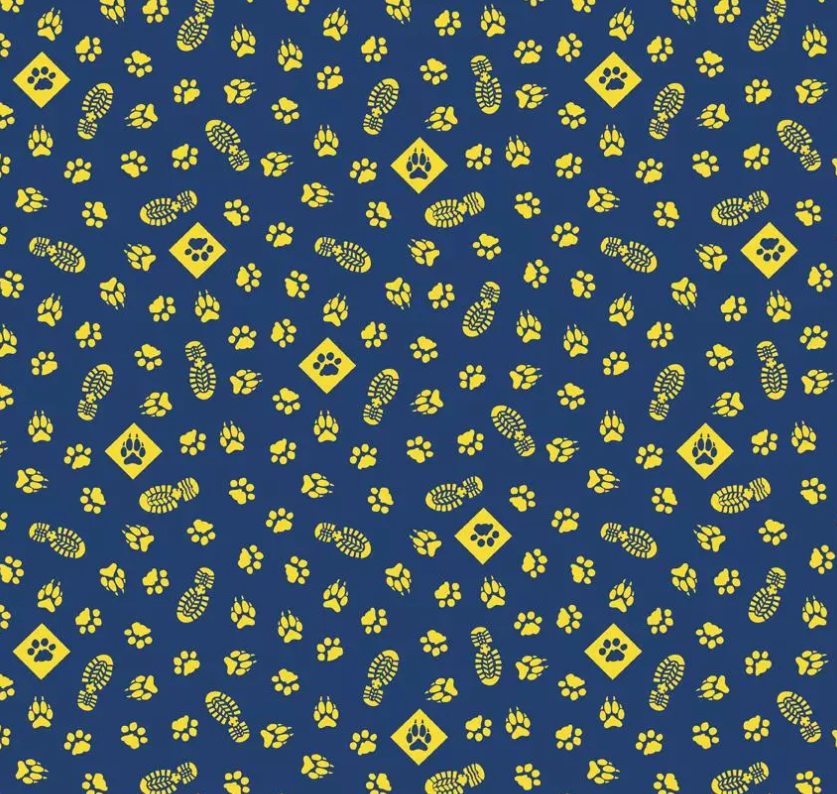 Cub Scouts by Riley Blake Designs (C7202-NAVY)
