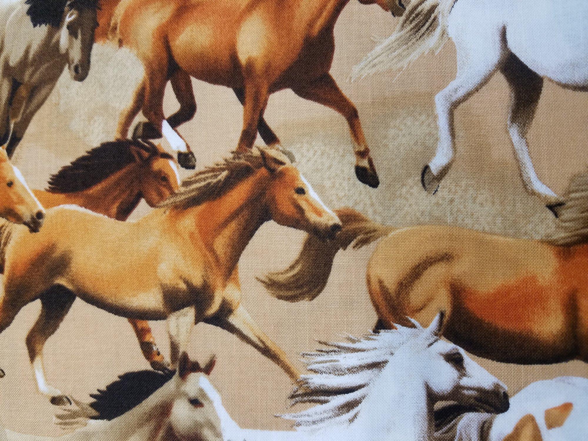 Wild Wild West (Kanvas)