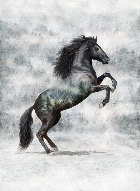 Call of the Wild (Horse) by Hoffman Fabrics (T4861-669-NOIR)
