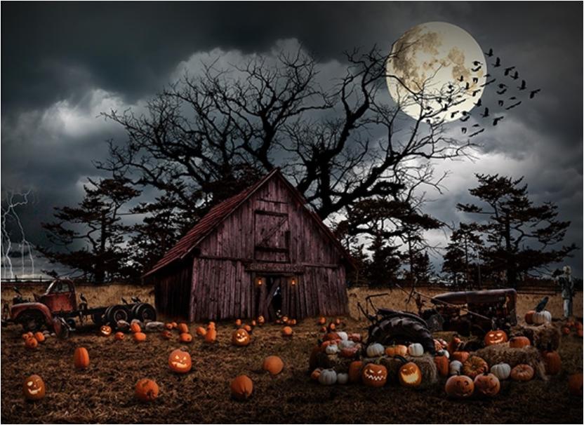 Haunted Halloween PANEL by Hoffman Fabrics (T4863-192-PUMPKIN)