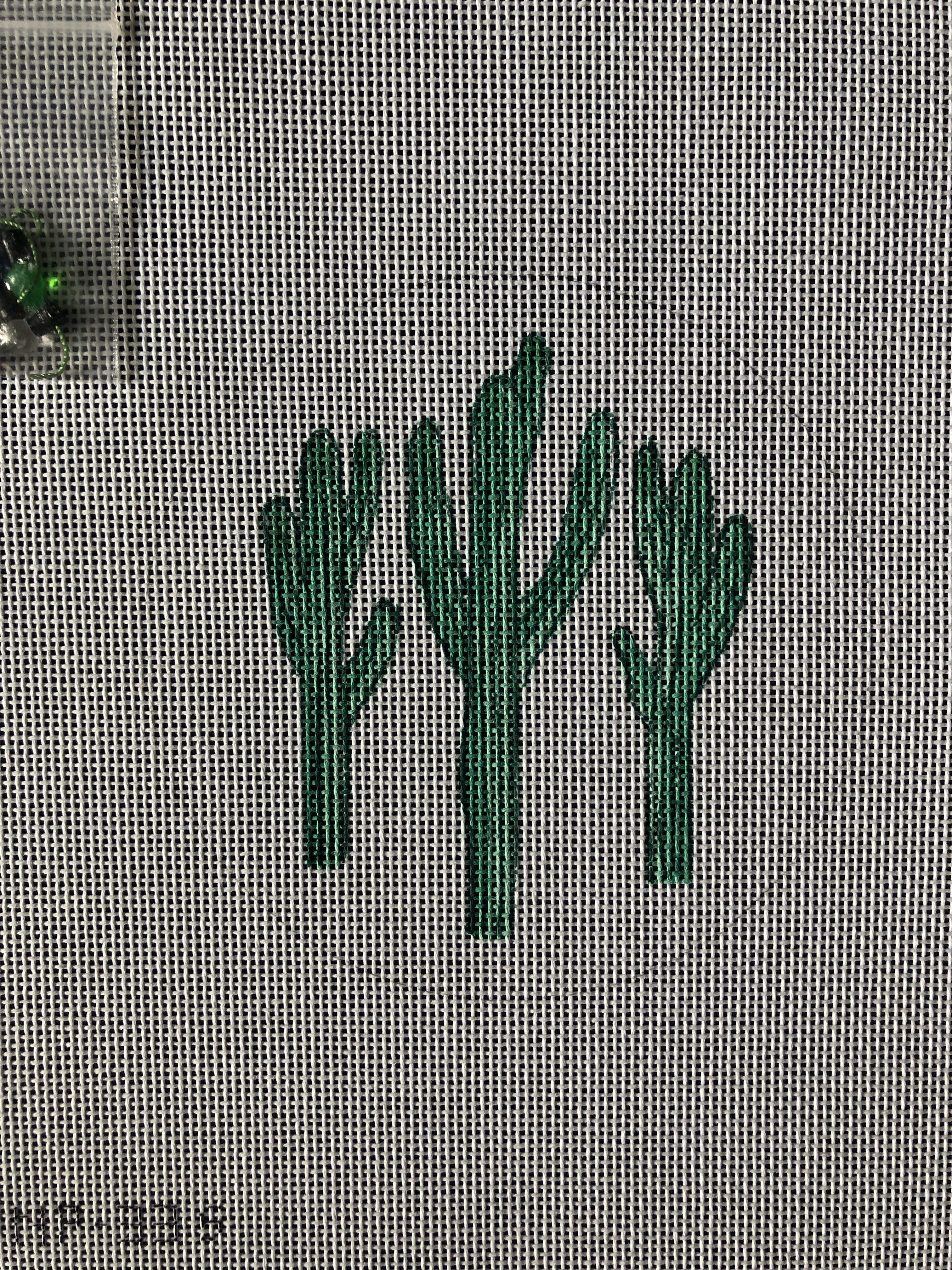 Cactus with Lights Round