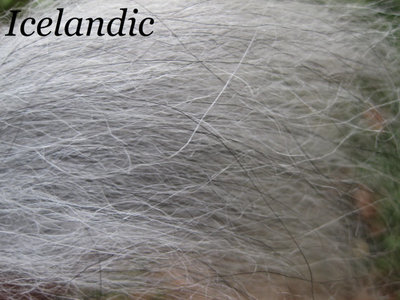 Icelandic Wool