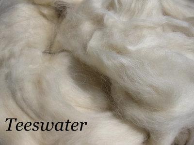 Teeswater wool