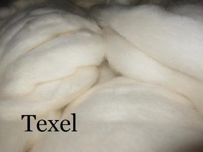 Texel Wool