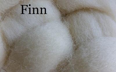 Finn Sheep