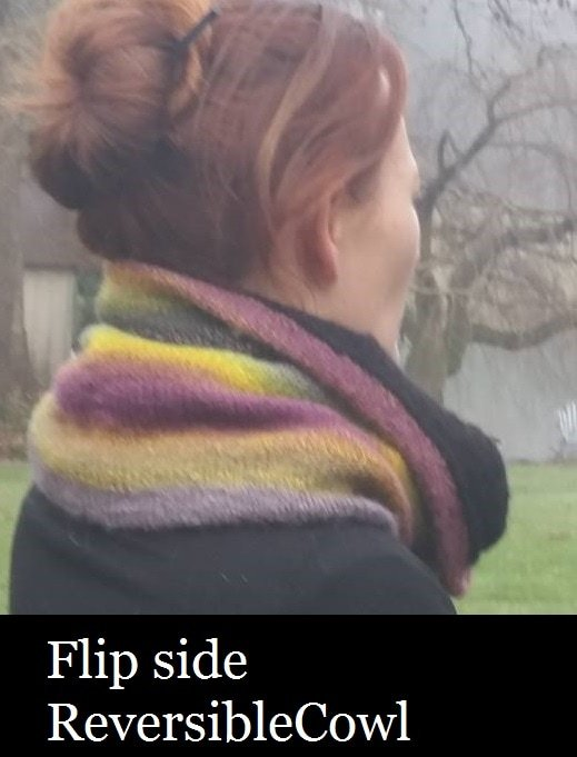 Flip Side Reversible Cowl