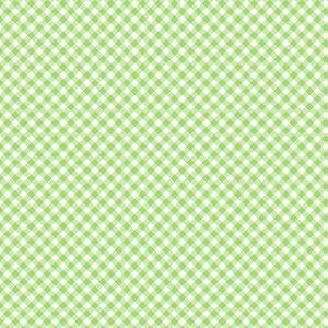 Adventure Time Green Gingham