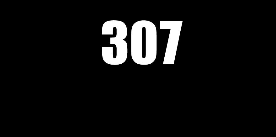 307 Baggers