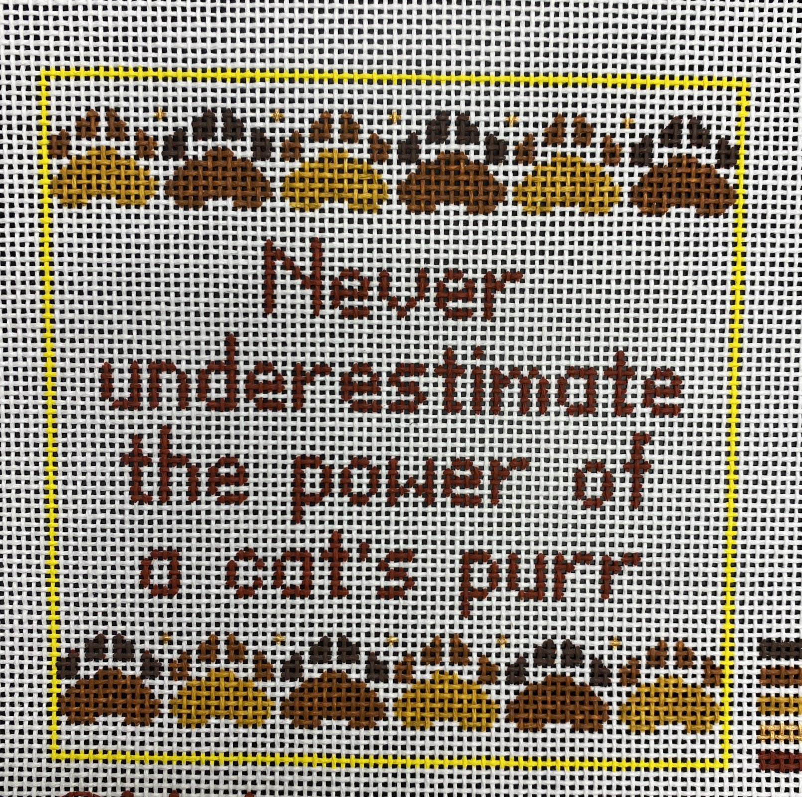 never underestimate cat...
