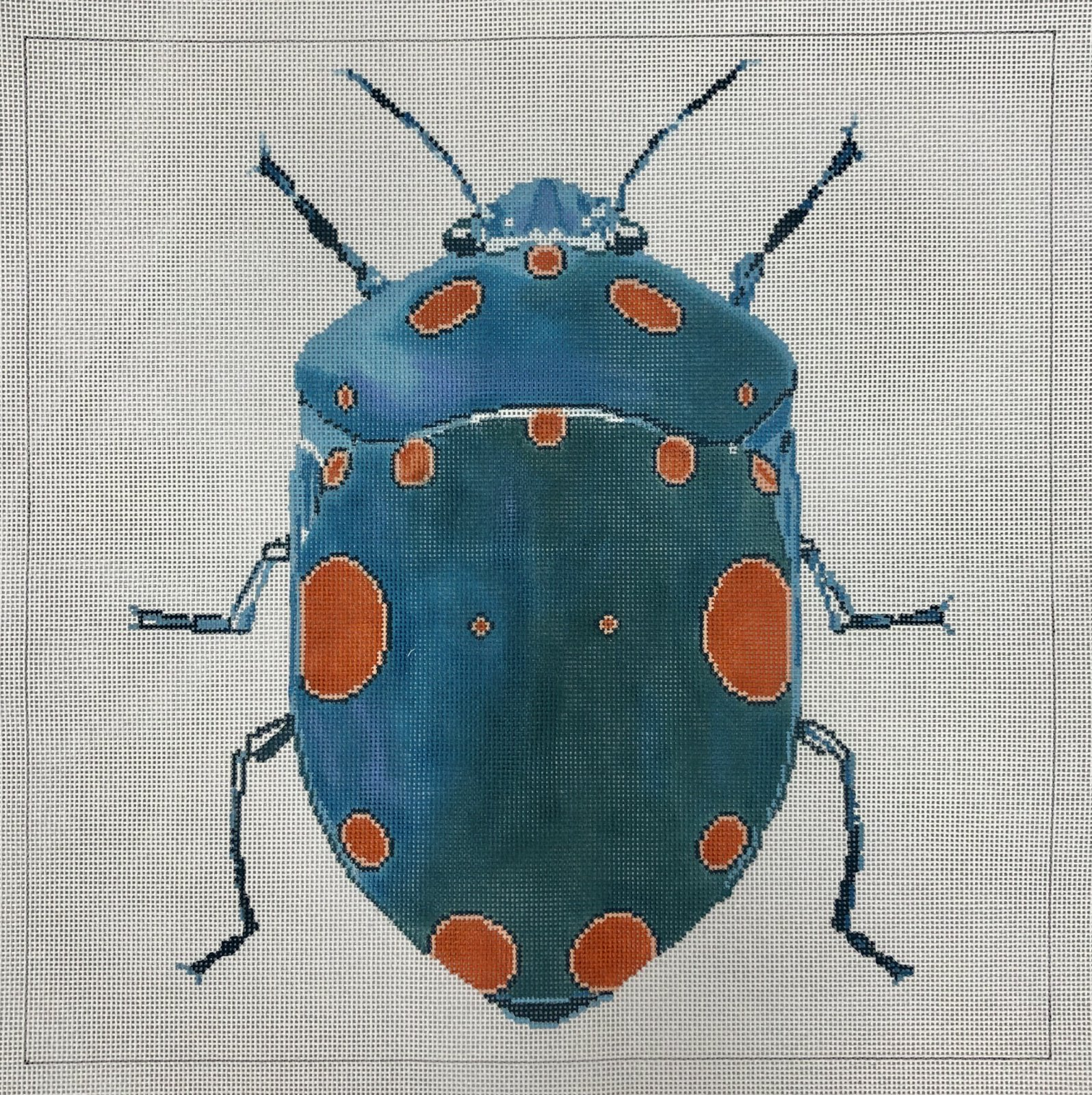 big teal & orange dots bug