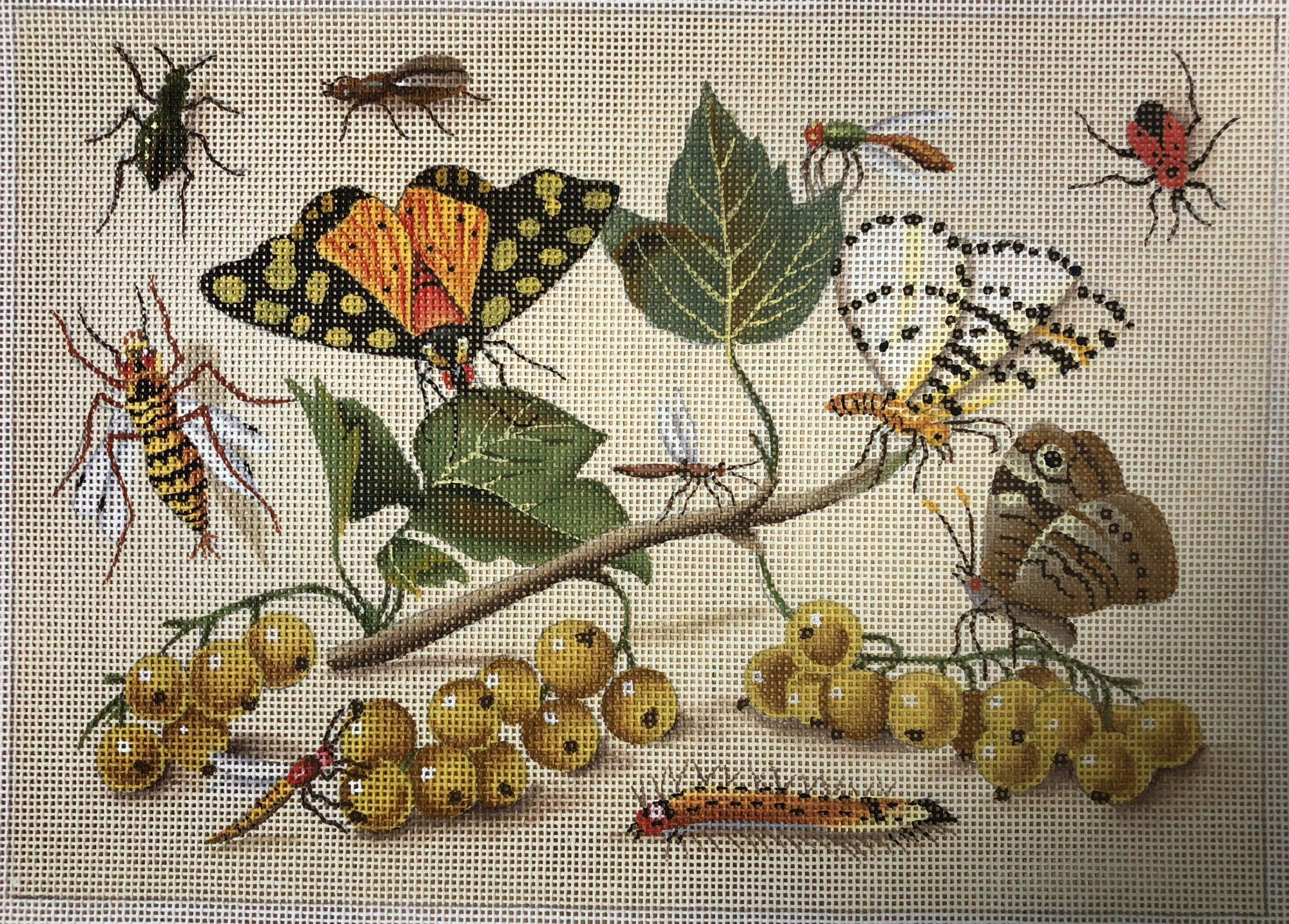 currants & butterflys