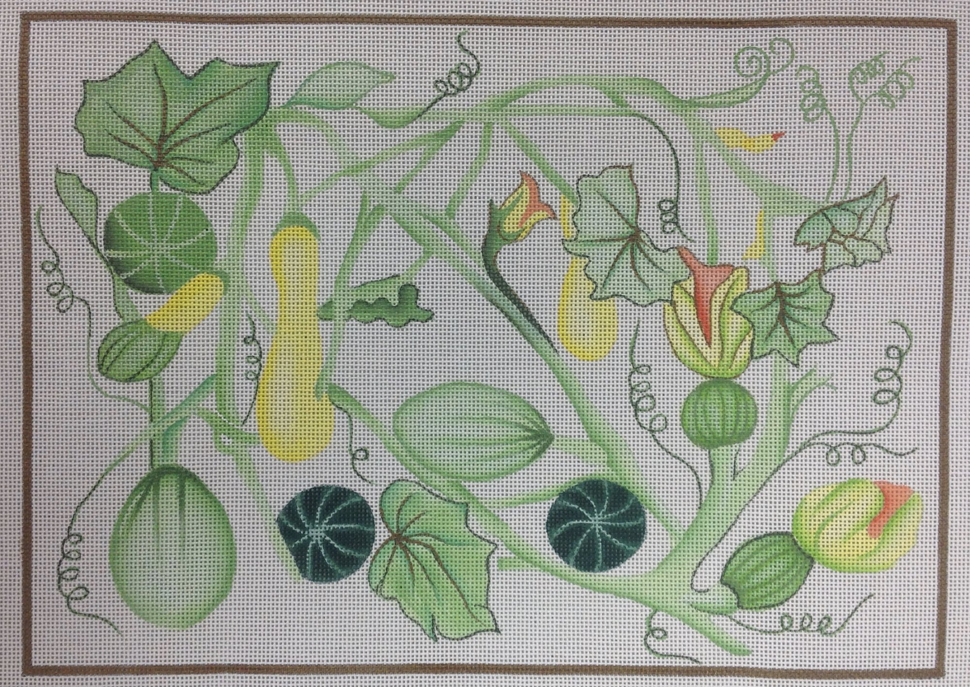 summer squash w stitch guide