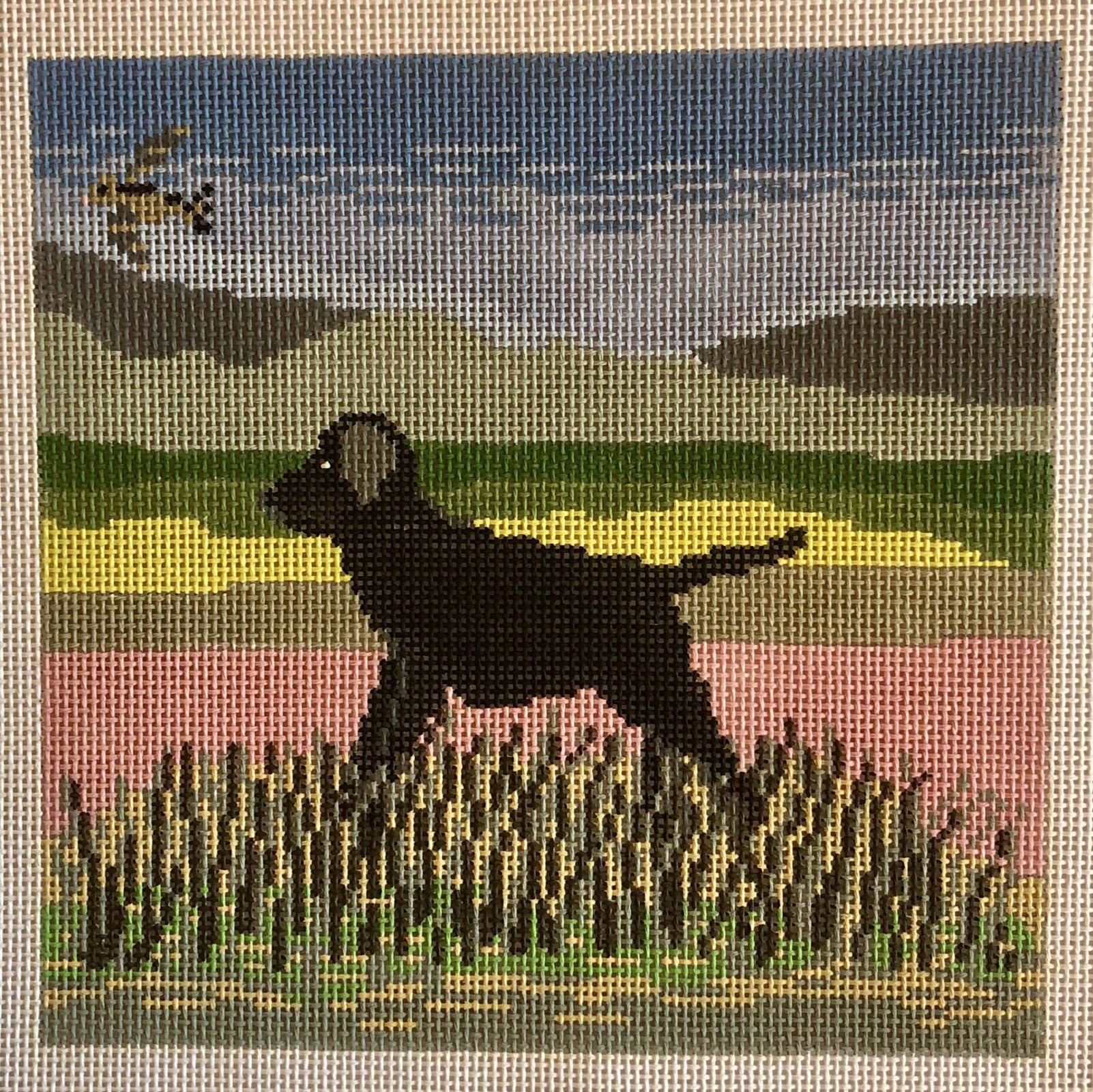 black dog w pastel sky