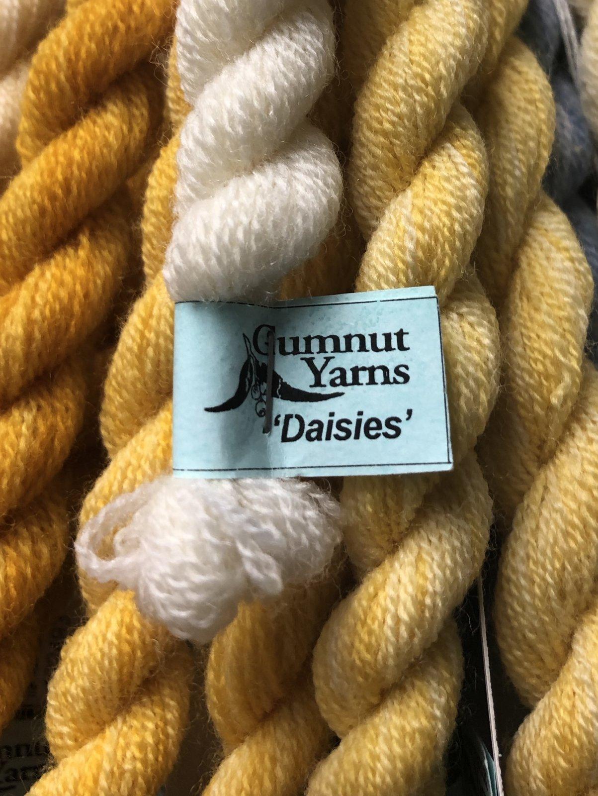 gumnuts daisies
