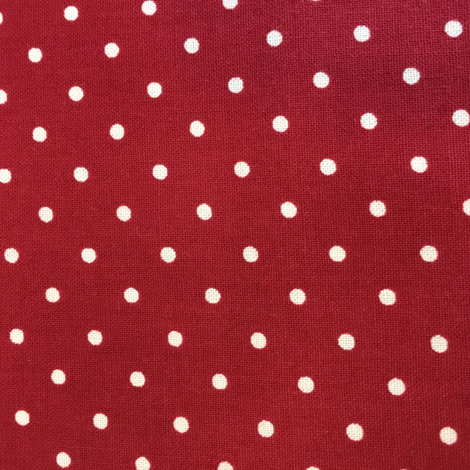 Robyn Pandolph Essential Dots
