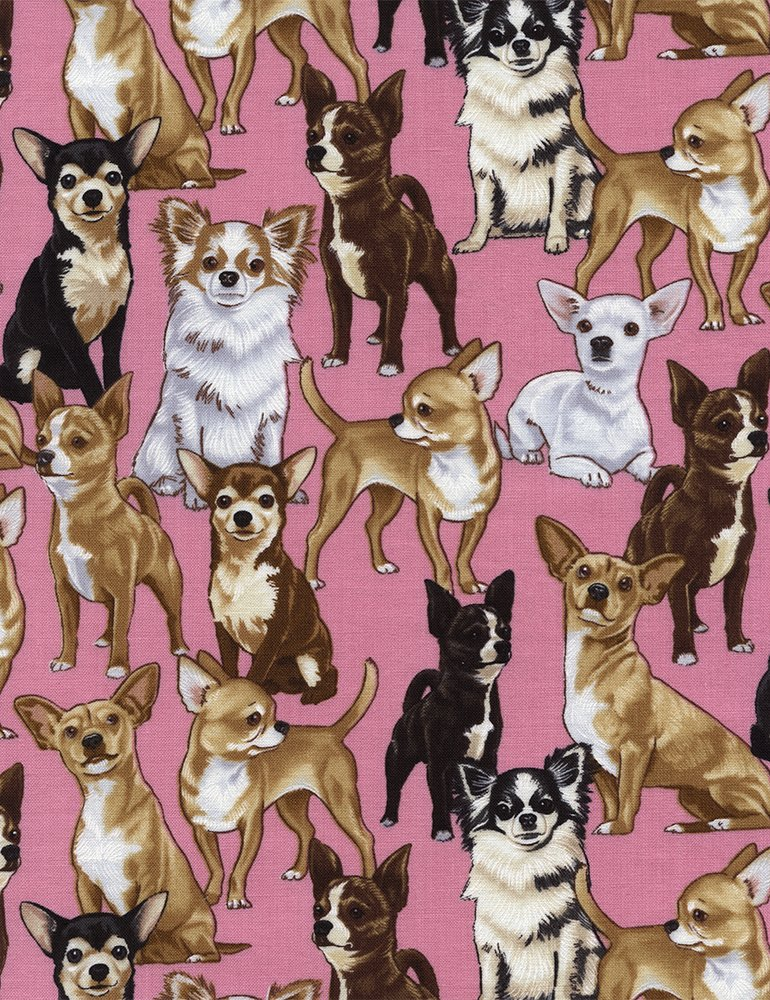 Chihuahuas - Pink - Timeless Treasures