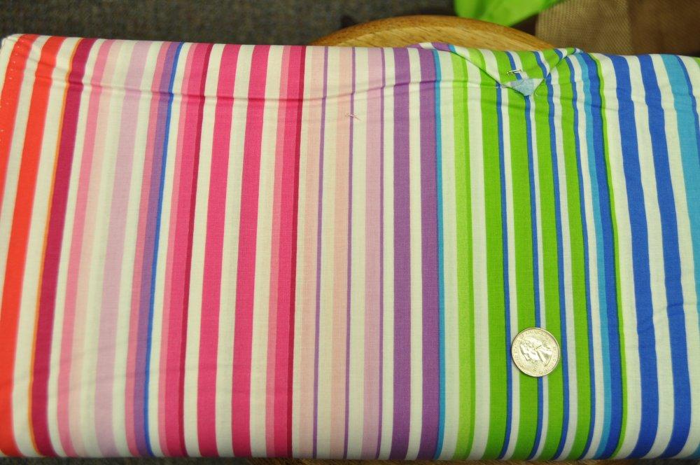 Neon Stripe White 2743-09