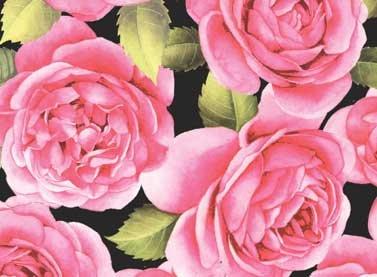 Large Rose on Black-25008-BLA1
