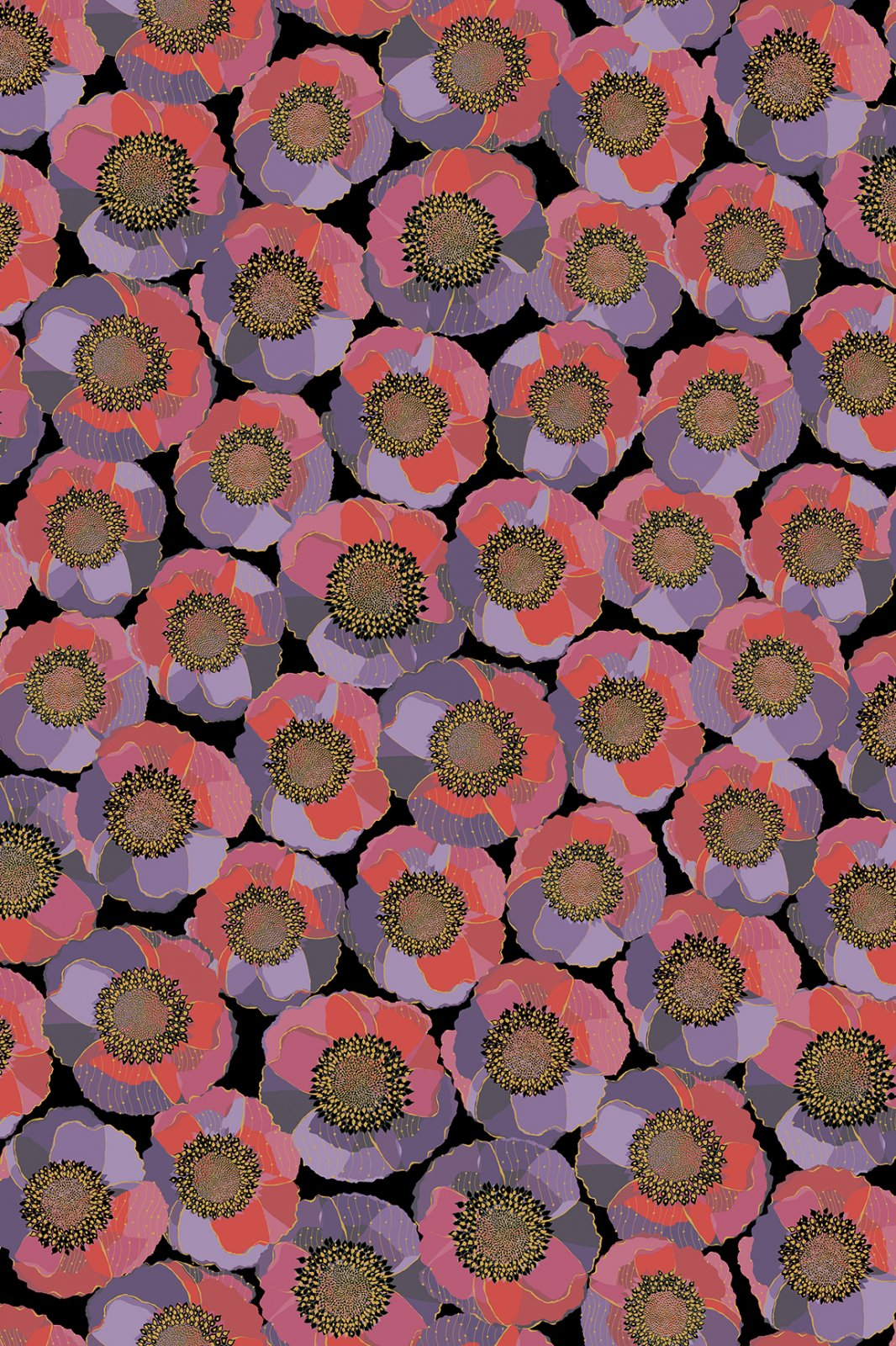 Bellisima1649-26209-J - Packed Floral Black