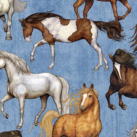 Mustang Sunset 1649-26482-B Mustangs - Blue