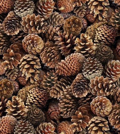 Landscape Medley - 454-BROWN - Pinecones