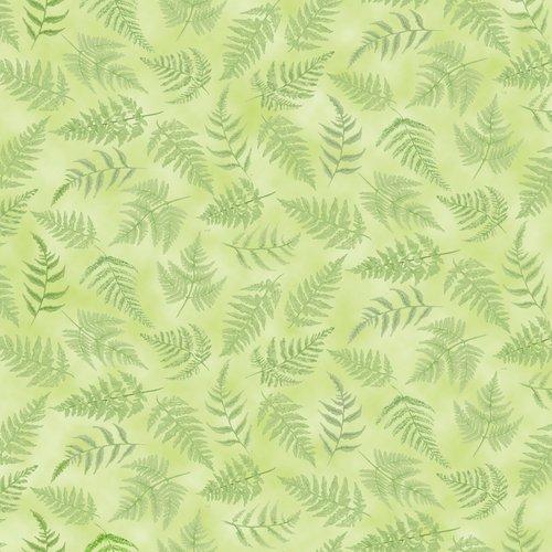 Papillon Parade<br>Green Ferns 9370-60