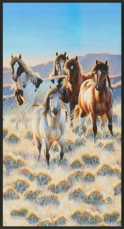 North American Wildlife Horses - AUYD-18288-268 - Nature