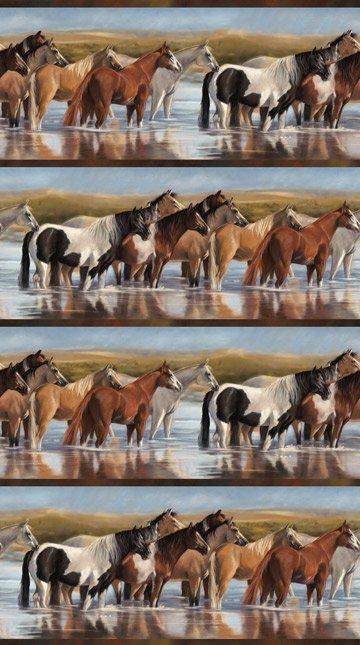 Unbridled DP22460-44<br>Horse Stripe
