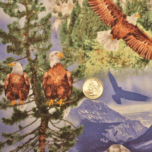 Eagle Soaring Eagles Scenic Blue - C7103