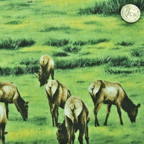 Elk Gathering Elk Grazing Green - 1560-1