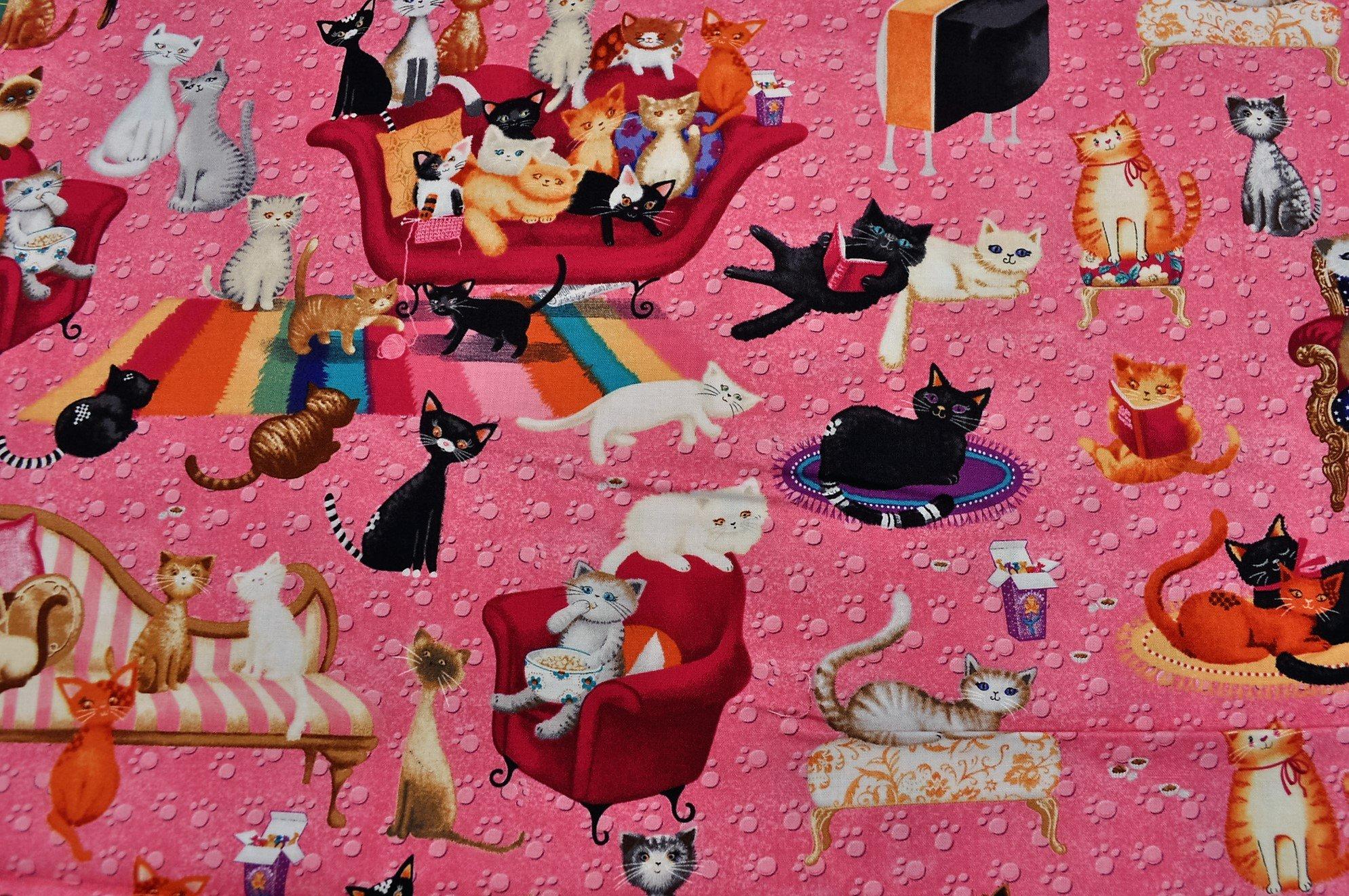 Kitty Galore Pink 06395-22