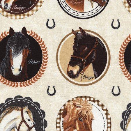 Horse Portraits Horse-C4329