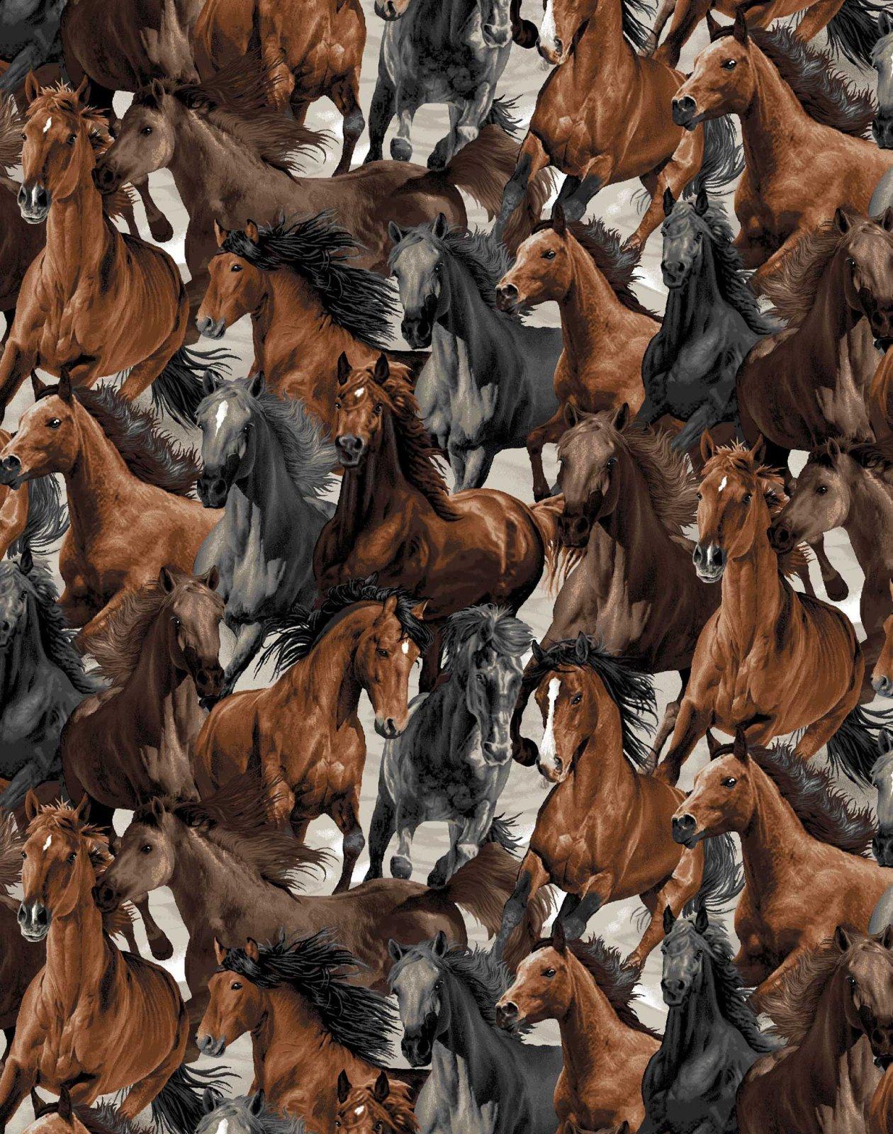 Horse Play Packed Horses OA6012701