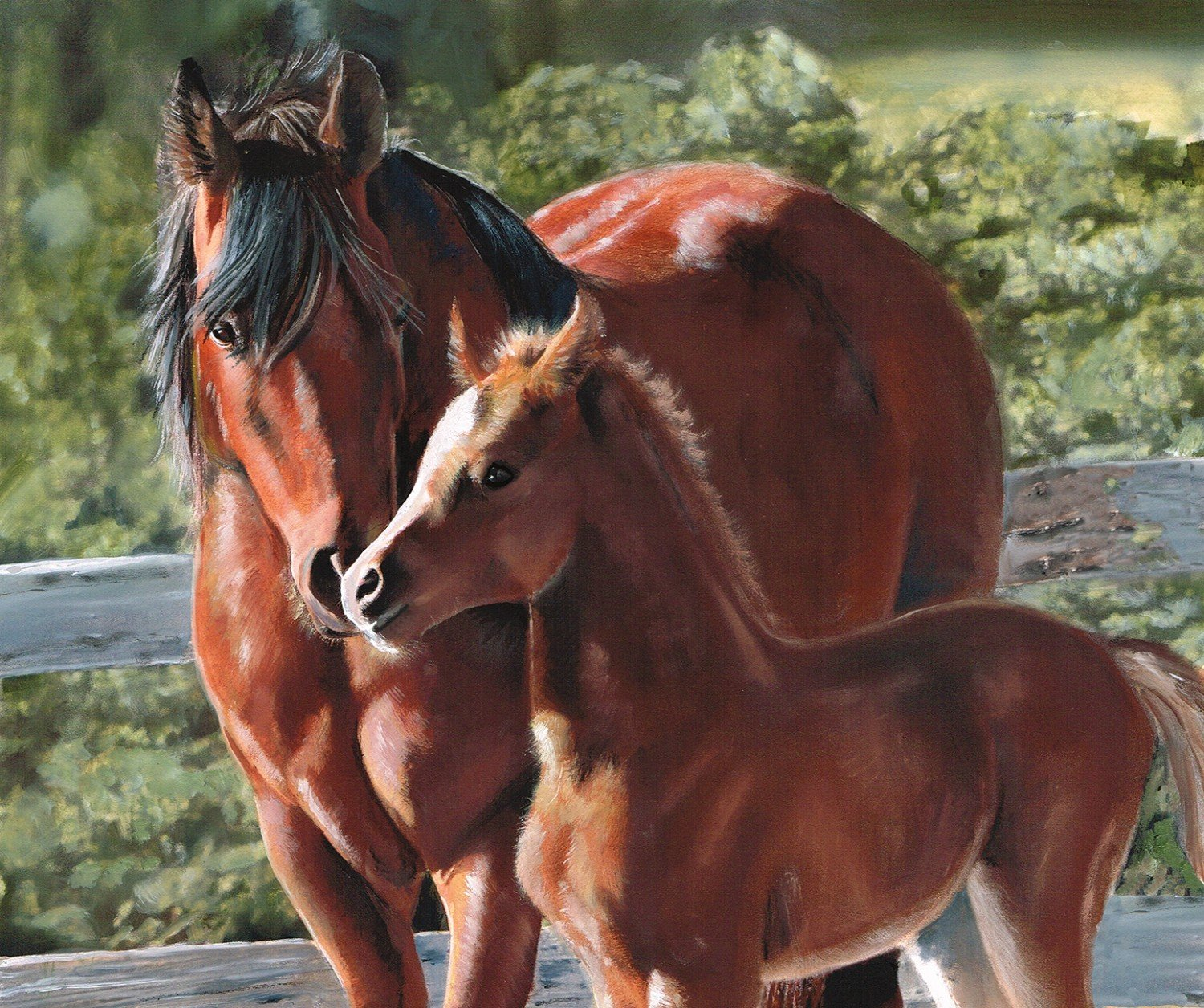 f05ec70a97b Back in the Saddle Mother & Son Panel P8343-MOTHER