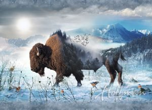 Call of the Wild Bison - Q4427-555-Bison