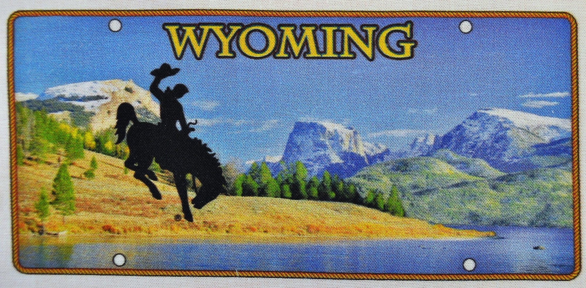 Wyoming License Plate - 3.25 x 7