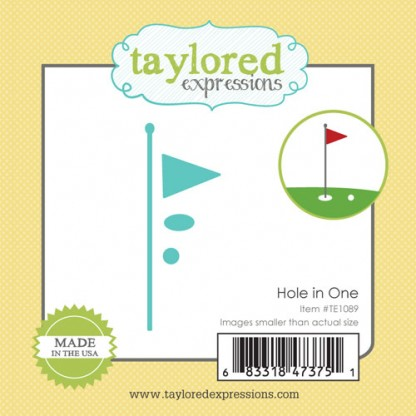 Taylored Expressions- Hole In One