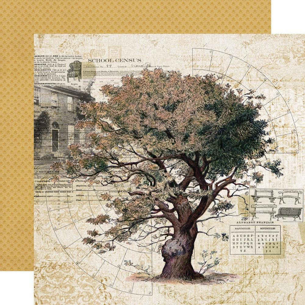 Simple Vintage Ancestry Double-Sided Cardstock 12X12-Family Tree