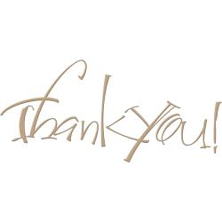 Thank You Glimmer Hot Foil Plate by Paul Antonio