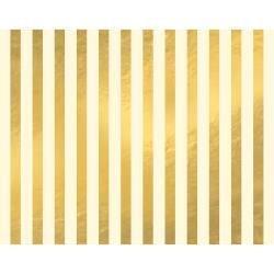 WeR Poster Brd-GOLD STRIPE 22x28