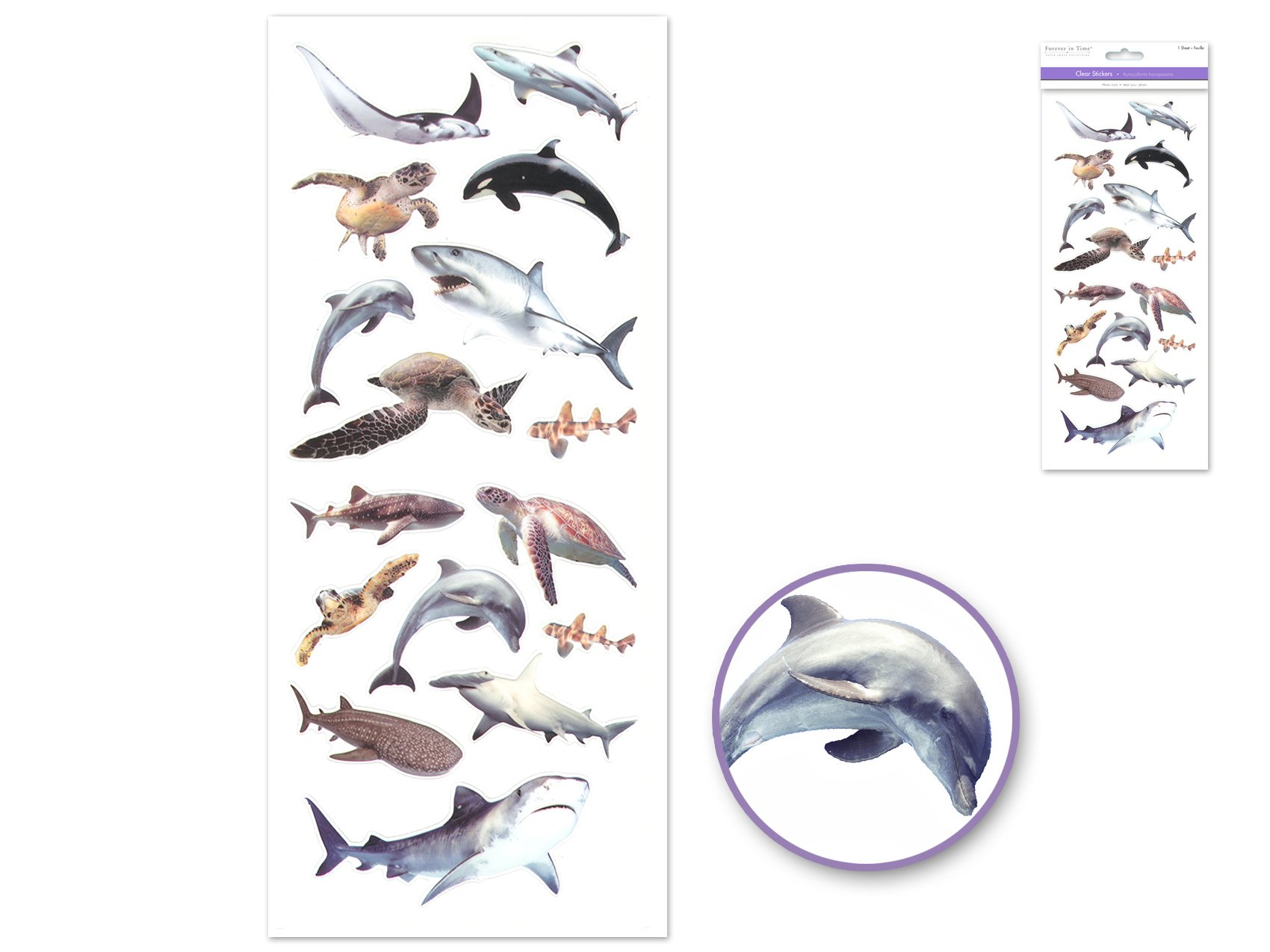 Sea Creatures- Forever in Time Stickers